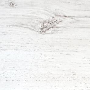 Белый дуб